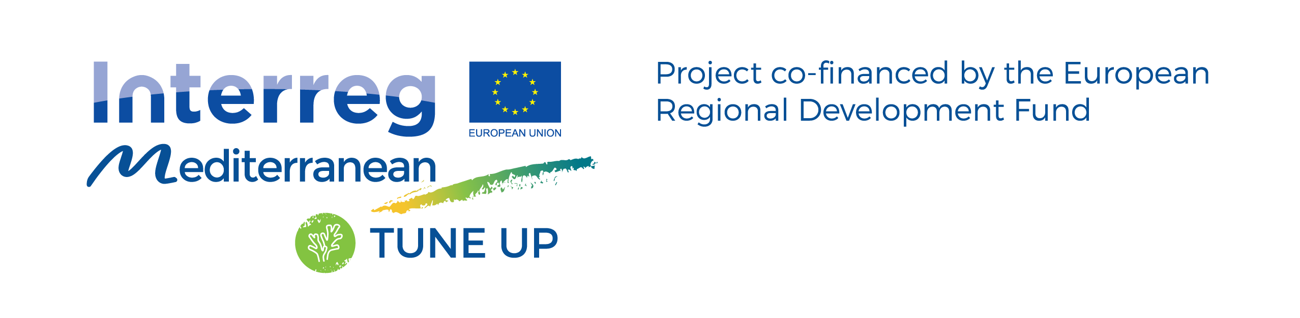 LOGO ERDF TUNE UP